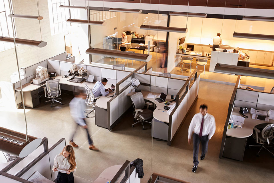 Workforce in office space which completed the Windows 10 migration.