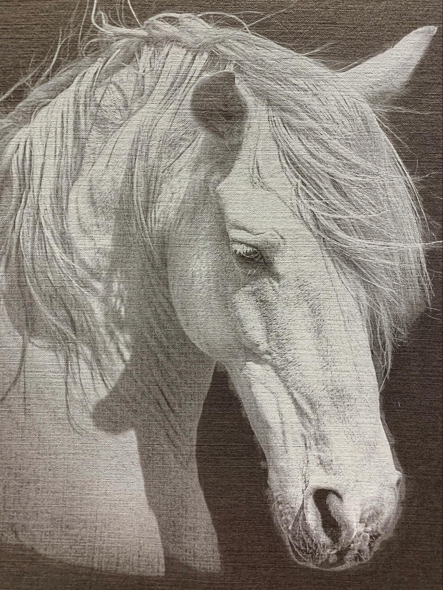 print out of horse using white ink